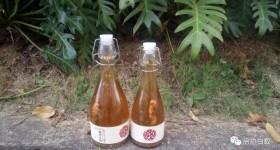 【古法】白蚁养生酒制作工艺